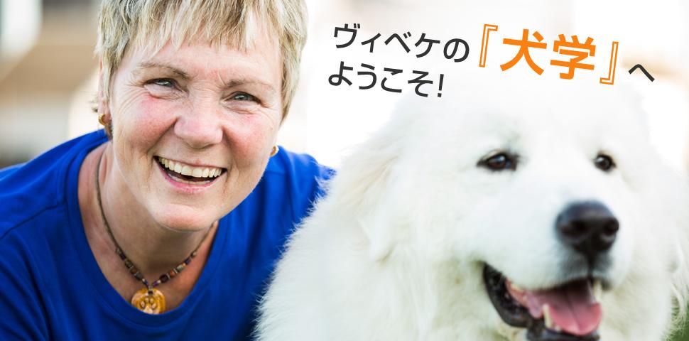 ヴィベケの『犬学』へようこそ!