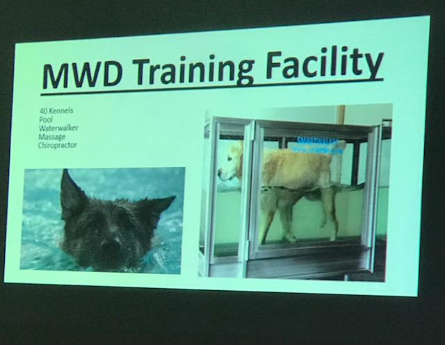 スライドの画像、ケアの様子も紹介されました。